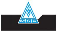tn MSA logo